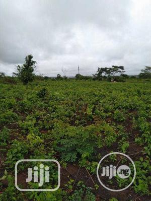 Survey Plan,Family Reciept,Samp Duty.   Land & Plots For Sale for sale in Ogun State, Ado-Odo/Ota