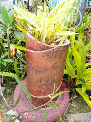 Beautiful Flowers And Landscaping For Your Homes And Gardens   Landscaping & Gardening Services for sale in Lagos State, Surulere