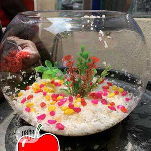 Well Set Fish Bowl | Fish for sale in Lagos State, Lagos Island (Eko)