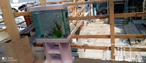 Exotic Standing Aquarium   Fish for sale in Lagos State, Surulere