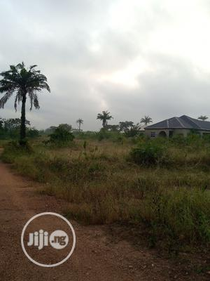 Plots Of Land For Sale Within Ojoo   Land & Plots For Sale for sale in Oyo State, Ibadan