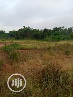 Plot Of Land Within Ojoo For Sale | Land & Plots For Sale for sale in Oyo State, Ibadan
