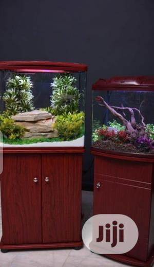 Modern Stand Aquarium Of All Kinds | Fish for sale in Lagos State, Surulere