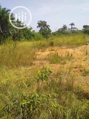 Plot Of Land Each For Sale Within Ojoo Makinde | Land & Plots For Sale for sale in Oyo State, Ibadan