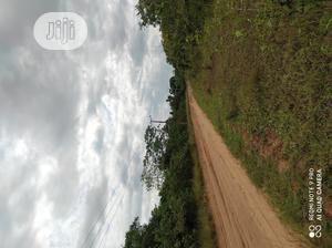 194 Acres of Land for Sale in Epe 1.5m Per Acre   Land & Plots For Sale for sale in Lagos State, Epe