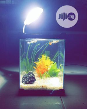 Acrylic Mini Aquarium For Sale | Fish for sale in Lagos State, Ikeja