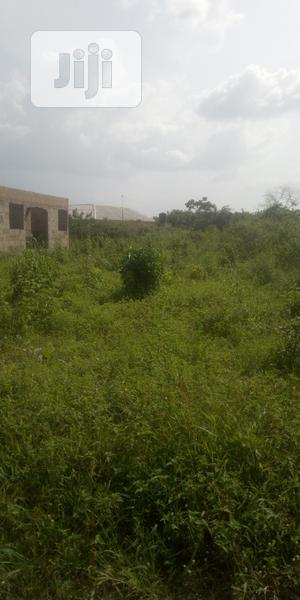 Affordable Land For Sale | Land & Plots For Sale for sale in Ogun State, Ewekoro