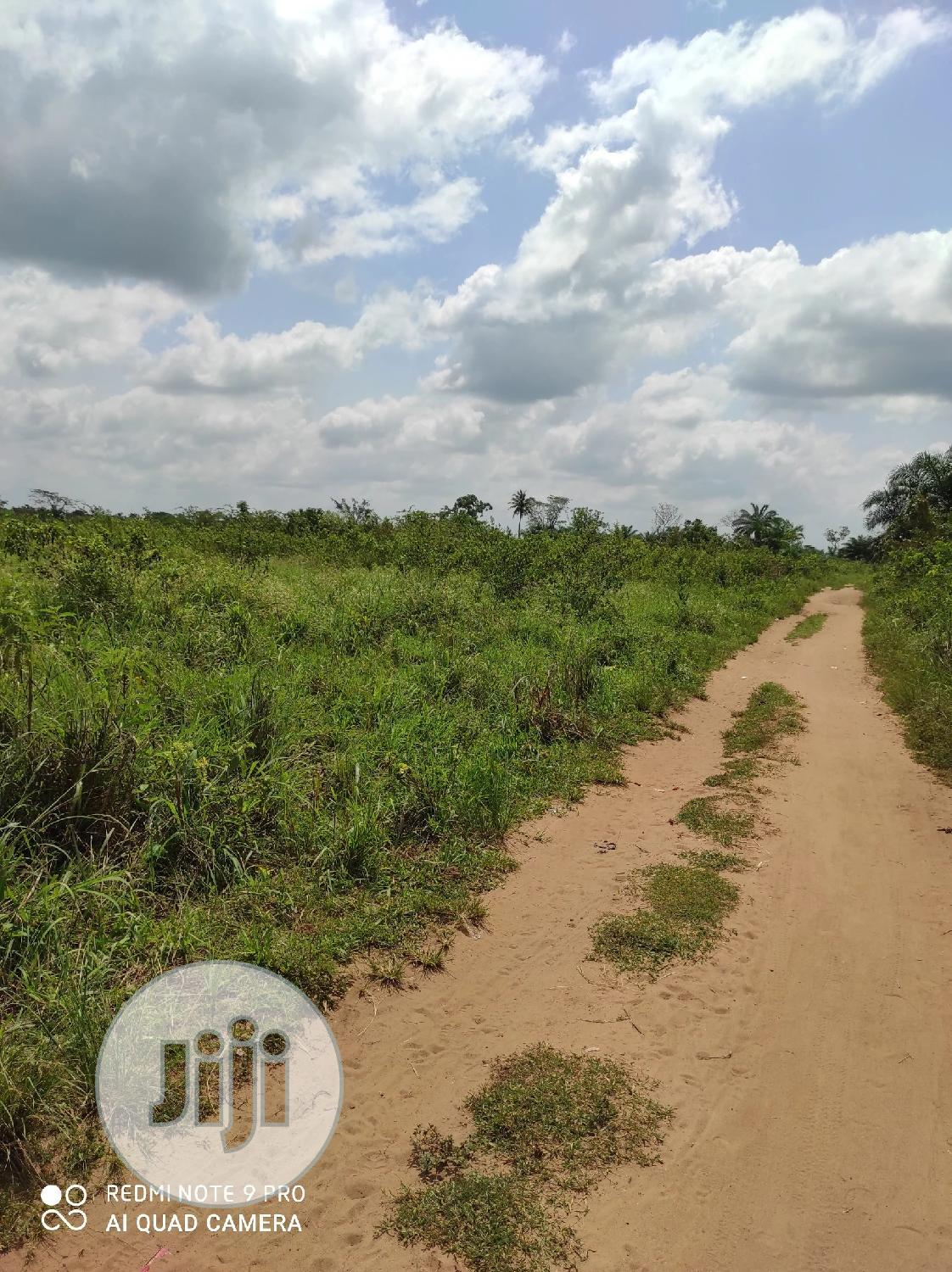 Plots Of Land For Sale | Land & Plots For Sale for sale in Ilaro, Ogun State, Nigeria