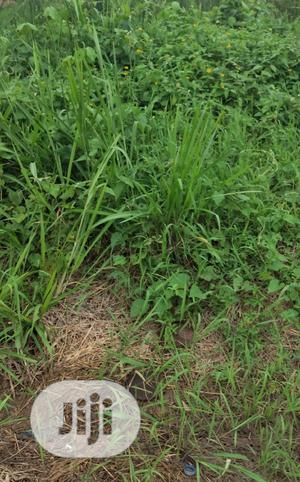 LEASE: 1000sqm Land Off Providence Street Lekki Phase 1 | Land & Plots for Rent for sale in Lagos State, Lekki