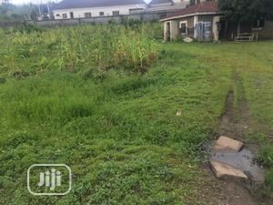 Distress Sale Of 3169 Sqm Residential Land In Asokoro, Abuja   Land & Plots For Sale for sale in Abuja (FCT) State, Asokoro