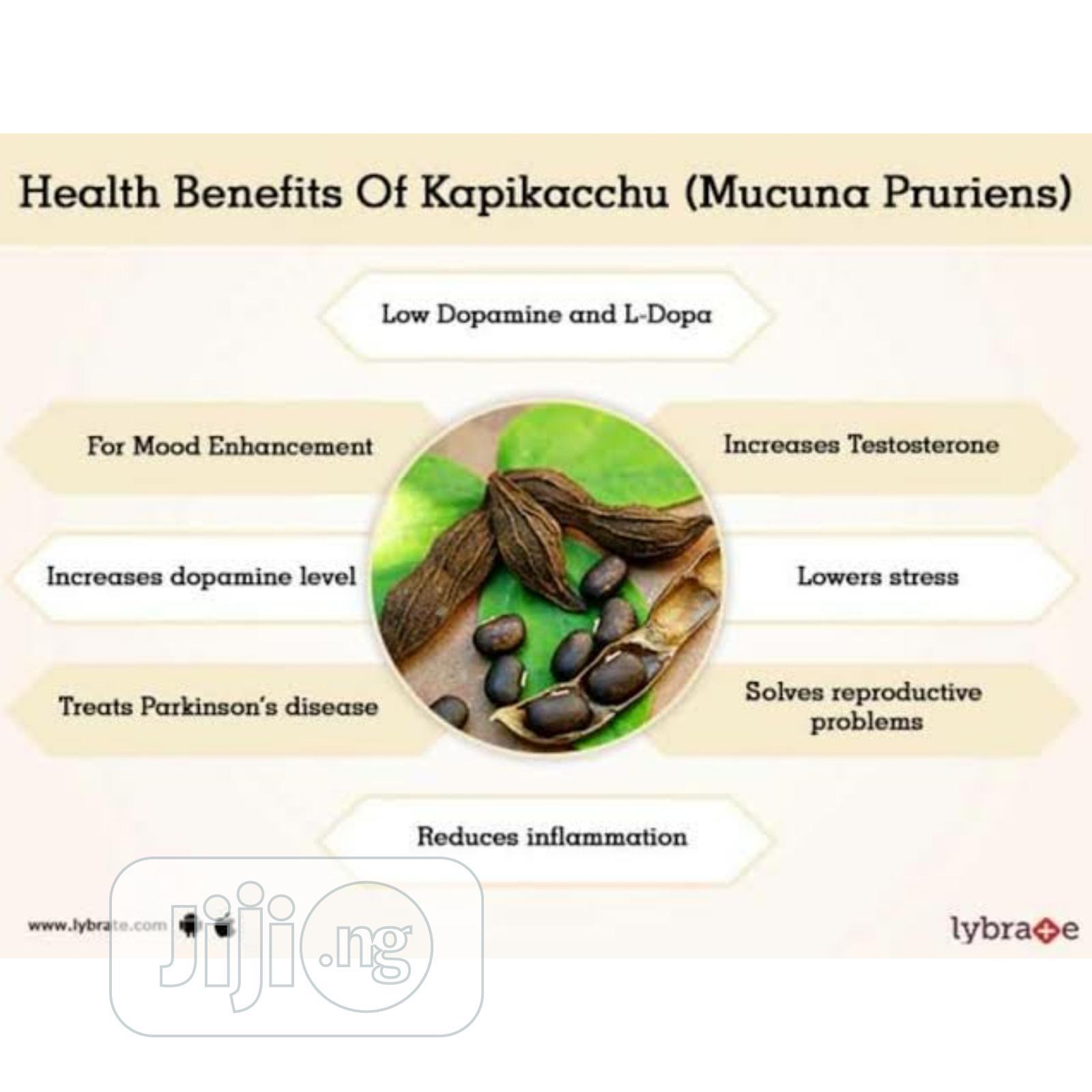 Archive: Organic Mucuna Seed 100g