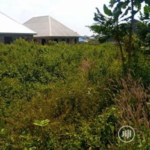 Plot Of Land For Sale   Land & Plots For Sale for sale in Oyo State, Oluyole