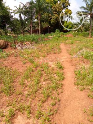 One Plot of Land for Sale.   Land & Plots For Sale for sale in Anambra State, Awka