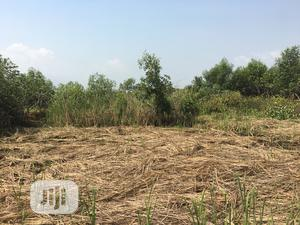 Resident And Farm Land For Sales In Ibeju Lekki Lagos   Land & Plots For Sale for sale in Lagos State, Ibeju