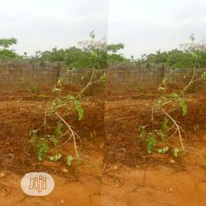 1 Hec Industrial Plot | Land & Plots For Sale for sale in Abuja (FCT) State, Idu Industrial