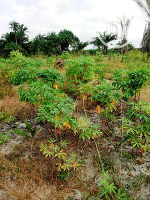Epe Farmland.It Has Deed of Assignment   Land & Plots For Sale for sale in Lagos State, Epe