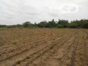 End Of The Year Sale; Acres Of Farm Land   Land & Plots For Sale for sale in Ogun State, Obafemi-Owode