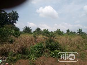 Farm or Industrial Use | Land & Plots For Sale for sale in Ogun State, Sagamu