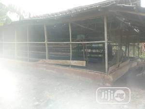 Farm Land For Sale   Land & Plots For Sale for sale in Egbeda, Egbeda / Egbeda