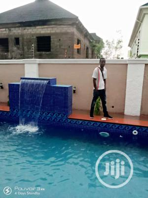 Perfect Swimming Pool Work | Building & Trades Services for sale in Edo State, Benin City