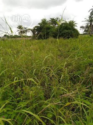 50 Acres Of Farmland In Ogun State   Land & Plots For Sale for sale in Ogun State, Ayetoro
