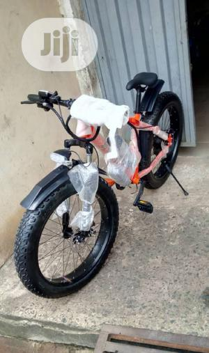 Adult Big Tire Bicycle   Sports Equipment for sale in Lagos State, Lekki