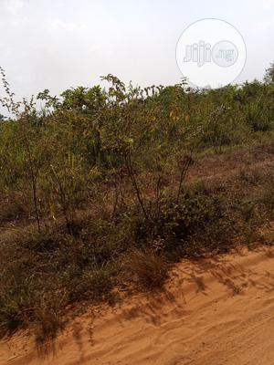 40 Acres of Arable Land at 400k Per Acre | Land & Plots For Sale for sale in Ogun State, Abeokuta North
