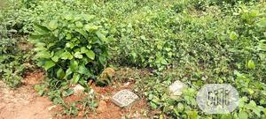 100ft by 150ft at Ahor for Sale   Land & Plots For Sale for sale in Edo State, Benin City