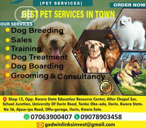 1-3 Month Male Purebred German Shepherd | Dogs & Puppies for sale in Kwara State, Ilorin South