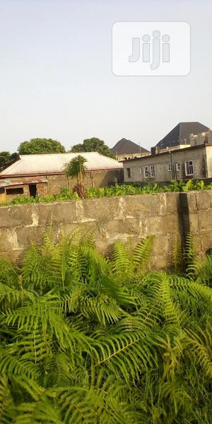 Buy And Build Plot Of Land For Sale | Land & Plots For Sale for sale in Amuwo-Odofin, Abule Ado