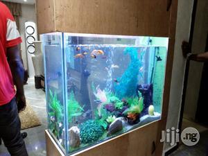 Bespoke Aquarium Construction | Fish for sale in Lagos State, Ajah