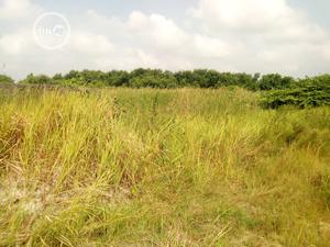 Land for Sale   Land & Plots For Sale for sale in Ikorodu, Igbogbo