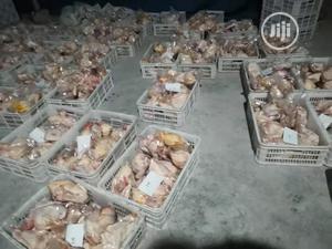 1000BPH Chicken Defeathering Machine Chicken Machine | Manufacturing Equipment for sale in Lagos State, Ojota