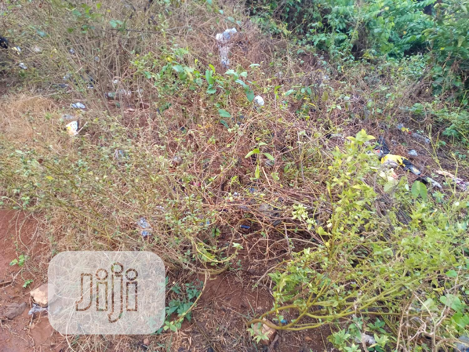 Plots of Land in a Fast Developing Area at Owode, Osun State