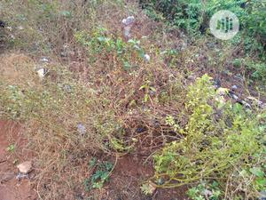 Plots of Land in a Fast Developing Area at Owode, Osun State   Land & Plots For Sale for sale in Osun State, Ede