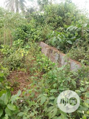 100ft by 200ft Plot of Land for Rent Near BIU.   Land & Plots for Rent for sale in Edo State, Benin City