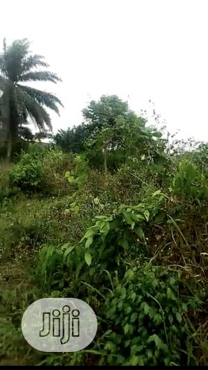 100 By 100 Plot Of Land For RENT At Uhie Community.   Land & Plots for Rent for sale in Edo State, Benin City