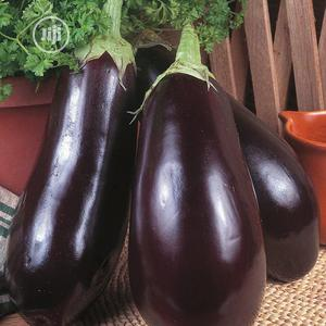 Egg Plant, Aubergine Or Brinjal Seeds   Feeds, Supplements & Seeds for sale in Lagos State, Amuwo-Odofin