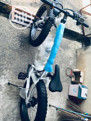 Standard Electric Bicycle | Sports Equipment for sale in Lagos State, Ojodu