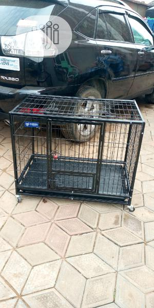 Imported Dog and Dog Cage   Pet's Accessories for sale in Lagos State, Alimosho
