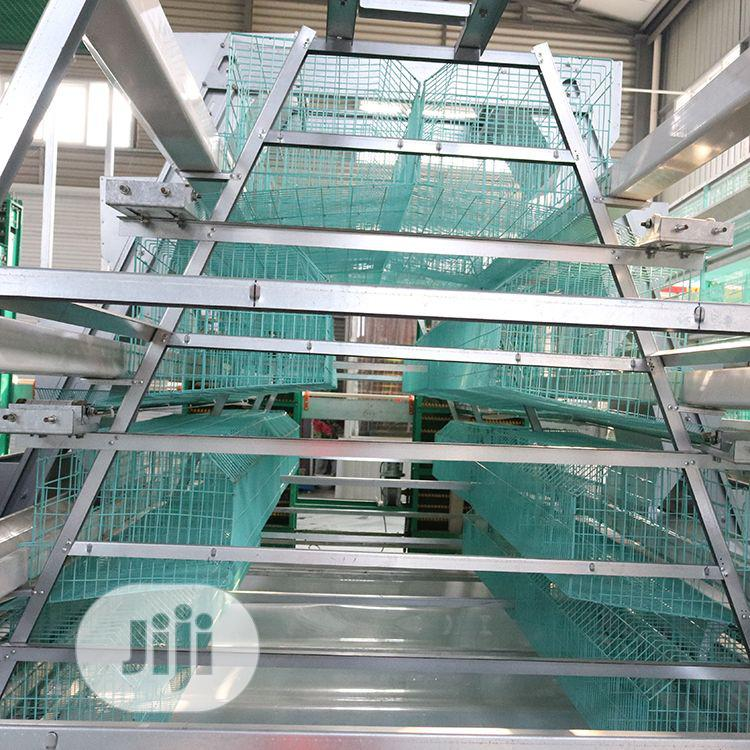 Poultry Cage / Automatic Poultry Cage / China Poultry Cage