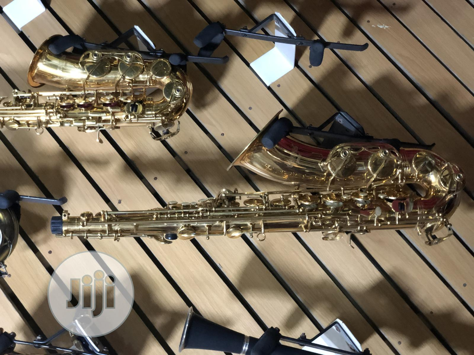 Alto Saxophone With Accessories Available in Gold and Silver