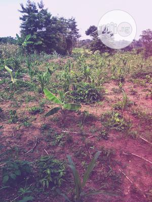 30acres of Land for Sale   Land & Plots For Sale for sale in Oyo State, Akinyele