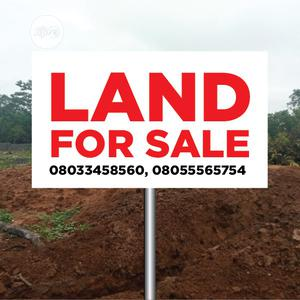 550sqm Estate Residential Land for Sale at Asokoro Extension   Land & Plots For Sale for sale in Abuja (FCT) State, Asokoro