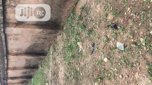 Distressed 2 Flat of 3 Bedrooms for Sale | Houses & Apartments For Sale for sale in Edo State, Ikpoba-Okha