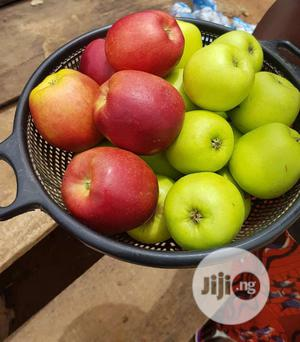 Apple Seedlings Available for Sale | Feeds, Supplements & Seeds for sale in Oyo State, Ibadan