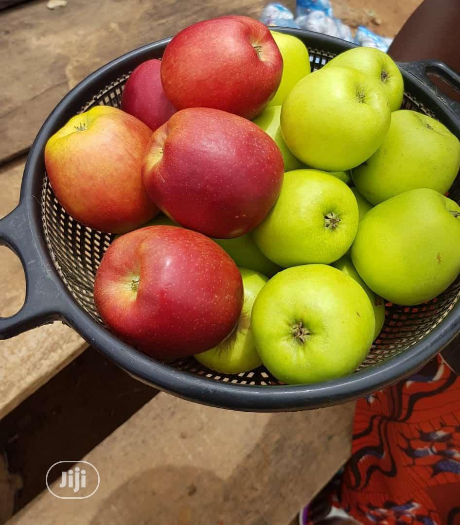 Apple Seedlings Available for Sale