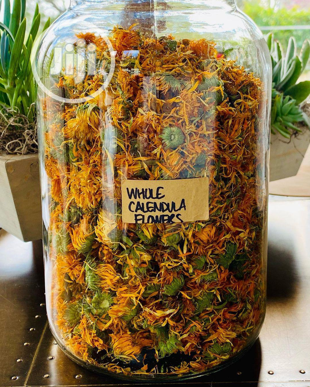 Archive: Calendula Flower