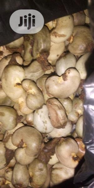 Raw Cashew Nuts | Feeds, Supplements & Seeds for sale in Kogi State, Dekina