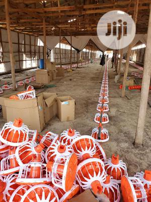 Complete Automatic Broiler Feeding and Drinking Line   Farm Machinery & Equipment for sale in Rivers State, Port-Harcourt